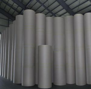 China Best Woodfree Coated Duplex board Art Board Ivory Board Offset Paper manufacturer Suppler on sale