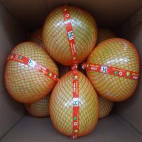 Buy cheap Global GAP Certified Fresh Style Delicious Citrus Fruit , High Grade Sweet Honey Pomelo from wholesalers