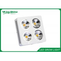 Professional Cree Cob Hydroponic Led Grow Lights High Times With HPS Lamp