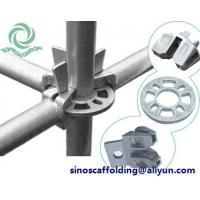 Best Quality ringlock for construction