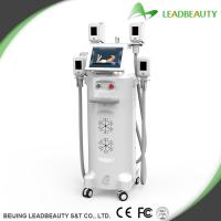 Buy cheap Four handles save the treatment time cryolipoltsis fat loss machine from wholesalers