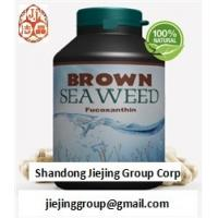 China natural brown seaweed wakame extract fucoxanthin 1%, 5%, 10% 20% powder ingredients on sale