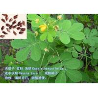 Buy cheap SEMEN CASSIAE,CASSIA SEED from wholesalers