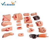 Buy cheap Advanced Trauma Accessories CPR Training Manikins Nurse Training Model from wholesalers