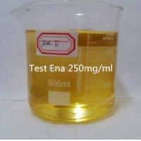Buy cheap Injecting Steroids Oil Testosterone Enanthate 250mg/ml Injectable Anabolic Steroids Test Ena For Bodybuilder from wholesalers