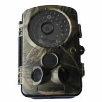 Buy cheap Outdoor Hunting Camera 1280x720p AVI With 2.5 Inch Display Infrared Wildview from wholesalers