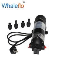 Buy cheap WHALEFLO DP-160M 220V AC 160psi 12v dc high pressure car wash water pump cleaner from wholesalers