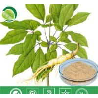 Buy cheap Manufacturer Pure Natural High Qulity Suma Extract, Pfaffia Paniculata Extract, Brazilian Ginseng Extract from wholesalers