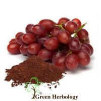 Buy cheap Botanical Derivatives Grapeseed Extract Powder Cosmetic Raw Material from wholesalers