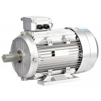 Buy cheap Three Phase IE2 Motor , Asynchronous Induction Motor 400v 50hz 6 Poles 1HP / 0.75KW from wholesalers