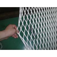 Buy cheap PP Safety Fencing Multi Sport Nets , Ice-Hockey Net 100gsm - 500gsm from wholesalers