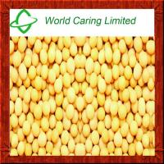 Buy cheap High Purity herbal ingredient 98% Natural Daidzein CAS#486-66-8 from wholesalers