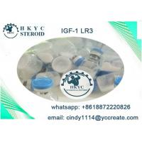 Buy cheap Human Growth Hormone Peptides Steroids IGF-1 LR3  For Fat Loss And Bodybuilding from wholesalers