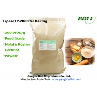 Wholesale Food Grade Lipase Enzyme For Baking , Robust Activity Bread Enzymes Stable Activity from china suppliers