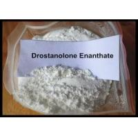 Buy cheap 99.8% Purity Oral Muscle Building Anabolic Steroids Methandrostenolone / Dianabol CAS 72-63-9 from wholesalers