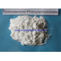 Wholesale Raw Powder Otc Testosterone Booster , Testosterone Boosting Supplements 1255 49 8 from china suppliers