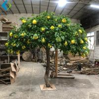 Wholesale Grapefruit Citrus Artificial Fruit Tree For Home Garden Scenic Decoration from china suppliers