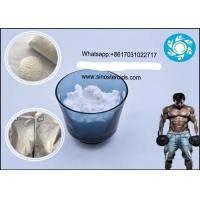 Buy cheap 99% Purity Primobolan Anabolic Steroids 303-42-4 Methenolone Enanthate for Bodybuiling from wholesalers