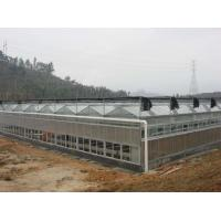 Buy cheap Sound Insulation PC Rigid Plastic Sheets Greenhouse Grade B1 Retardant Standard For Aquaponics from wholesalers