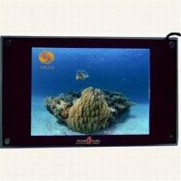 Buy cheap 7inch-52 inch LCD advertising player from wholesalers