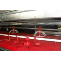 Buy cheap Automatic feed and ventilation equipment for broiler chicken breeding from wholesalers