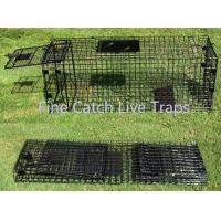 Buy cheap Folding cage traps for animal handling from wholesalers