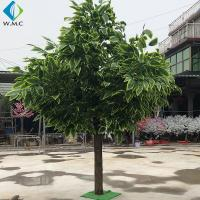 Wholesale Home Decoration Fake Mango Tree 3m Height Customized Design from china suppliers