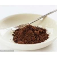 Wholesale Professional Unsweetened Alkalized Cocoa Powder Bitter 10-12% HACCP Light Brown To Dark Brown Powder from china suppliers