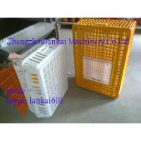 Buy cheap chicken cages, animal cages, plastic chicken transport cage, poultry cages. 0086-13526735822 from wholesalers