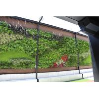 Wholesale Artificial Green Wall with Thick Fake Quality Plants for Vertical Garden Wall Decoration from china suppliers