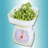 Mechanical Kitchen Food Scale Manufactures