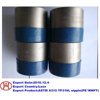 Wholesale ASTM A312 TP316L nipple(PE*MNPT) from china suppliers