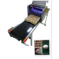 Intelligent Automatic Inkjet Marking Machine For 30 Holes Entire Pallet Eggs
