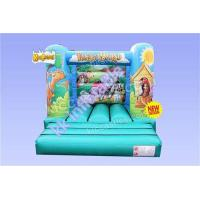 Bouncy Castles For Sale / Inflatable Bouncer / Kids Bouncy Castle Manufactures