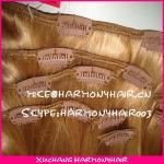 Buy cheap wholesale virgin brazilian clip in hair extensions/clip in human hair extensions/clip in hair extension from wholesalers