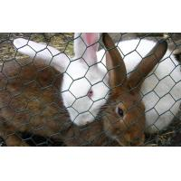 Buy cheap Rabbit-Proof Fencing,Galvanized Rabbit Guard Netting,Hare Fencing,Garden Shield Fence from wholesalers