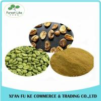 China Natural Pure Green Coffee Bean Extract Chlorogenic Acid 50% on sale