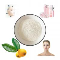 China Pharmaceutical Grade Loquat Leaf Extract Ursolic Acid Powder For Cosmeceutical on sale