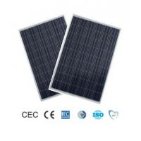 Wholesale TPT Backsheet Crystalline Poly PV Module 200 Watt 3% Output Power Tolerance from china suppliers