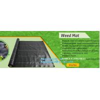Buy cheap green color Plastic Ground Cover Mats mulch weed control fabric mat,Weed Barrier Around Fruit Trees PP Woven Weed Mat fo from wholesalers
