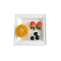 Buy cheap Disposable Dinnerware 10 Inch Square Sugarcane Pulp Plates from wholesalers