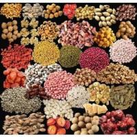 Buy cheap Almonds roaster/Peanuts Roaser electric roaster cashew roasting machine from wholesalers