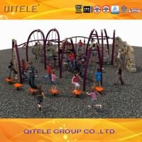 Wholesale Physical Activity Kids Outdoor Gym Equipment Climbers And Slide For Age 5 - 12 from china suppliers