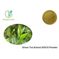Buy cheap Food Grade Pure Green Tea Extract Powder EGCG Powder Antioxidant Protection from wholesalers