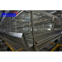 A type chicken cages system Manufactures