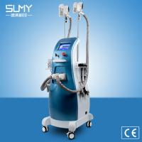 Buy cheap Touch Screen Cryo Cryolipolysis Handle Fat Freezing Ultrasound 40K Cavitation RF Laser Weight Loss slimming machine from wholesalers
