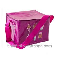 Wholesale new style pp woven cooler bag for ice creem or food storage use from china suppliers