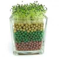 Buy cheap Free shipping 2pcs a lot negative ion Tao Tanqiu plant upgrade version of office plants green gift from wholesalers