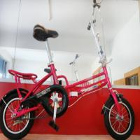 Wholesale lightweight folding bike from china suppliers