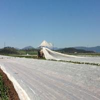 Buy cheap 15-100Gsm White Agriculture Ground Cover ,Black 1-3% UV Pp Spunbond NonWoven Fabric from wholesalers